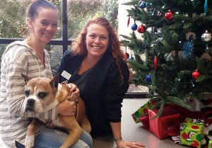 Cancer survivor dog , Addy, with PetCure staff