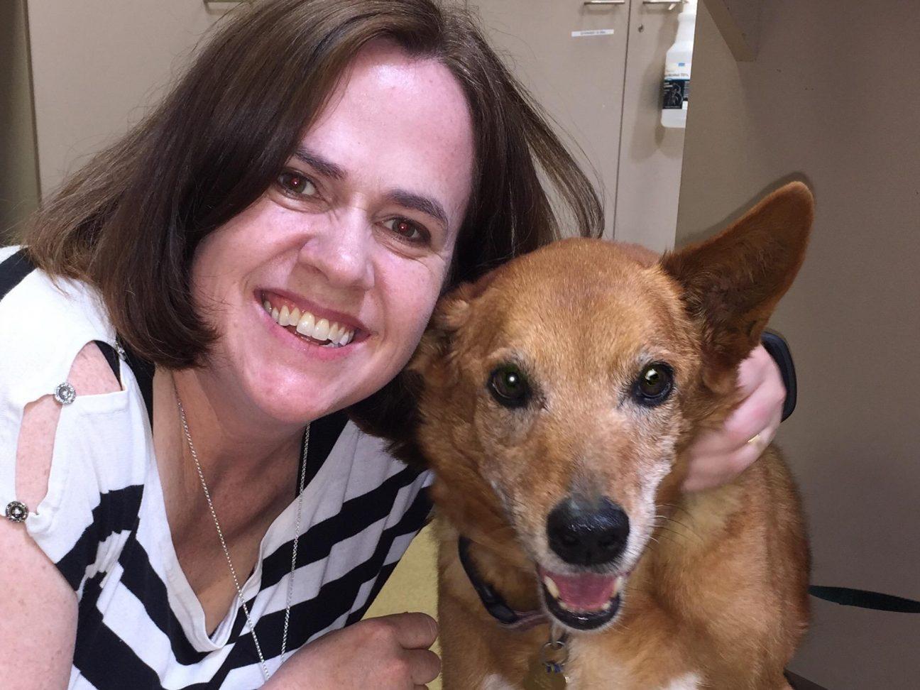 JoAnn Stewart cancer survivor PetCure Oncology blog