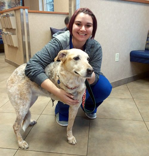 Mandie with veterinary technician