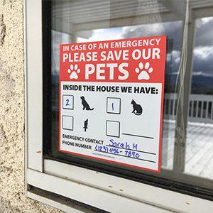 pet rescue window decal