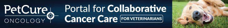 Portal for Collaborative Cancer Care