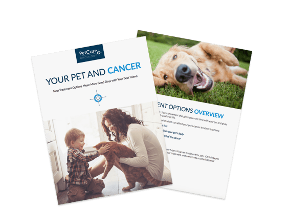 Nasal Cancer in Dogs | PetCure Oncology