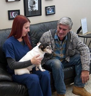 veterinarian-with-pet-owner-consultation-pet-cancer