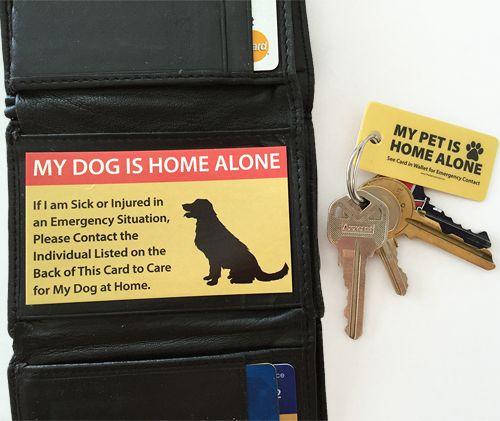 pet rescue card